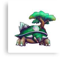 Earth Turtle Canvas Print