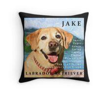 Jake Pillow Throw Pillow