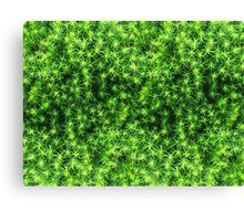 Mossy Natural Texture Canvas Print