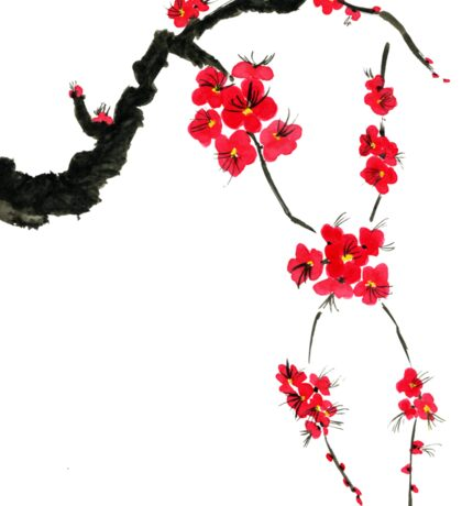 Red blossoming flowers of cherry Sticker