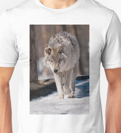 Timber Wolf Pup T-Shirt