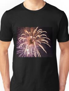Summer Fun and Fireworks Unisex T-Shirt