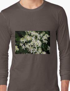 Prickly Sensation Long Sleeve T-Shirt