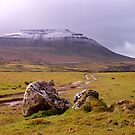 Ingleborough by mikebov