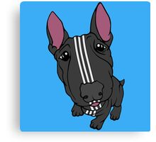 Sporty Bull Terrier Black and White Canvas Print