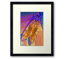 Moth on screen Framed Print