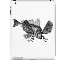 Vintage Sapharrine Gurnard Fish Illustration Retro 1800s Black and White Image iPad Case/Skin