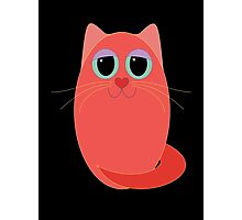 CAT RED ONE Photographic Print