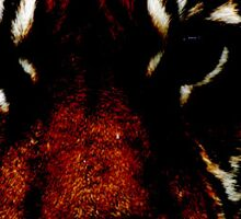 Tiger dark manipulations  Sticker