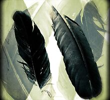 Two Raven Feathers by LaRoach