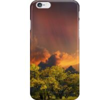4007 iPhone Case/Skin