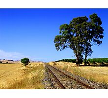 Rail Track to Nowhere Photographic Print