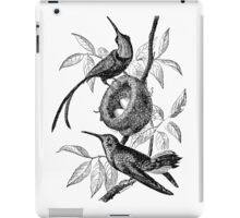 Vintage Hummingbird Bird Nest Illustration Retro 1800s Black and White Hummingbirds Birds Nests with Eggs Image iPad Case/Skin