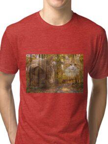 Genius Loci Tri-blend T-Shirt
