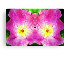 Pink Rose Bloom Mirrored  Canvas Print