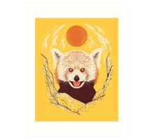 Red Panda on a Sunny Day Art Print