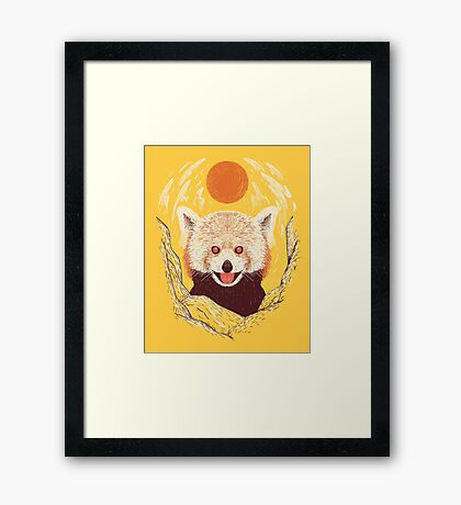 Red Panda on a Sunny Day Framed Print