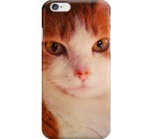 Cat Lumiere v.star iPhone Case/Skin