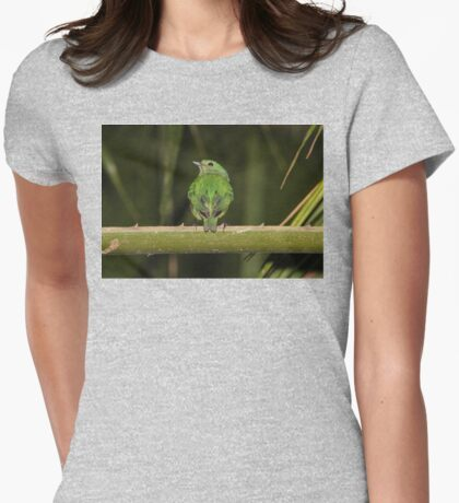 Female Blue-Crowned Manakin Womens Fitted T-Shirt