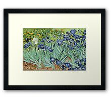 love flower Framed Print