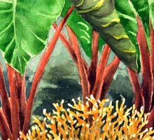 Coral & Kalo Sticker