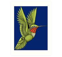 Red Throated Hummingbird Art Print