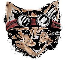 Punk Cat Photographic Print