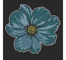 Colorful Flower Photographic Print