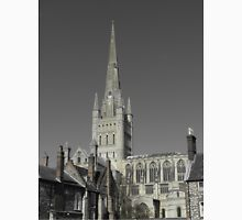 Norwich Cathedral; Chimney Pots ( Stone ) Unisex T-Shirt