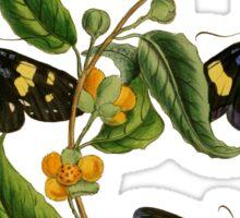 FF - Butterfly-2 Sticker