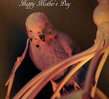 Bird on a Cage Mother's Day Card Postcard by ©Josephine Caruana