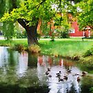 Ducks On Pond by Susan Savad