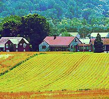 Farm Homestead by Susan Savad