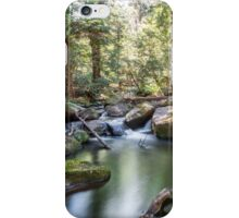Taggerty Cascadeds iPhone Case/Skin