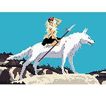 8 bit Mononoke 2 Photographic Print