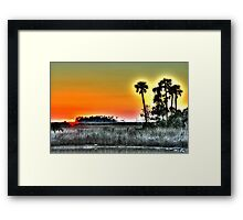 Backlit Palms at Sunset Framed Print