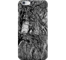 Scary Trees- Black Hill Sheoaks iPhone Case/Skin