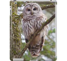 Who, Who, Who cooks for you? Barred Owl iPad Case/Skin