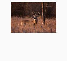 Basking in the light - White-tailed deer Unisex T-Shirt