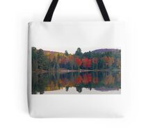 Pink Chairs on the beach in fall Tote Bag
