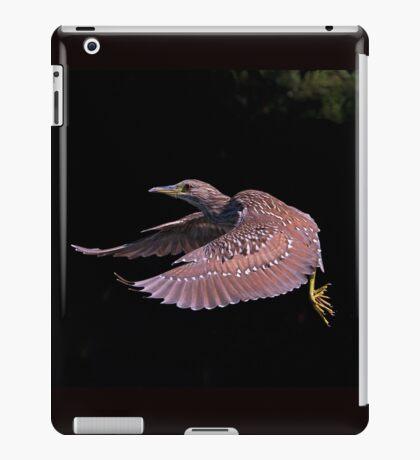 Juvenile Black-crowned Night Heron iPad Case/Skin