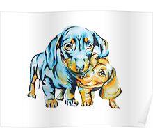 Daschund Puppies Poster