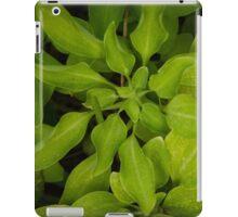 Green Mood iPad Case/Skin