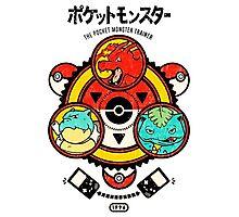 Pokemon-Pikachu-Pokeball Photographic Print
