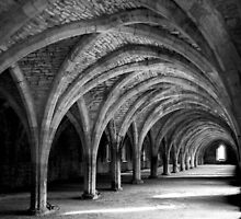 Fountains Abbey by Robert  Taylor