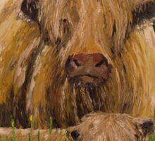 Scottish Highland Cow with Calf Sticker
