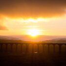 Ribblehead viaduct by Robert  Taylor