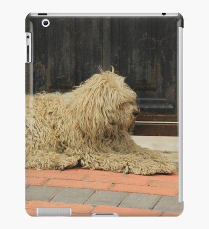 Shaggy White Dog iPad Case/Skin