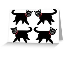 4 Black Cats in Red Collars Greeting Card