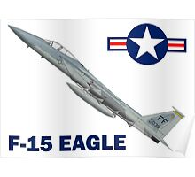 F-15C Eagle 94th Fighter Squadron USAF Poster